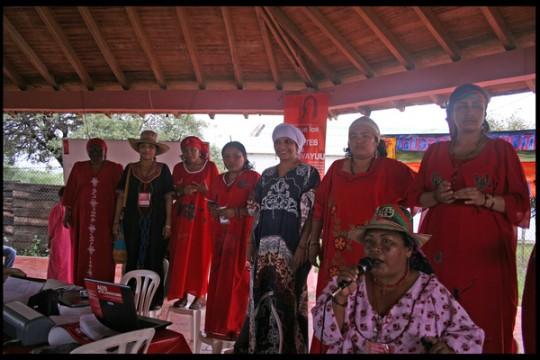 Organización Fuerza de Mujeres Wayuu