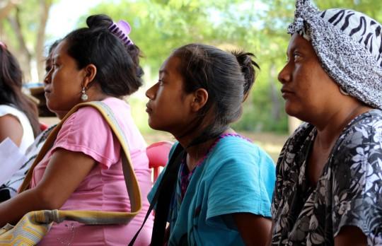 Wayuu-asistentes